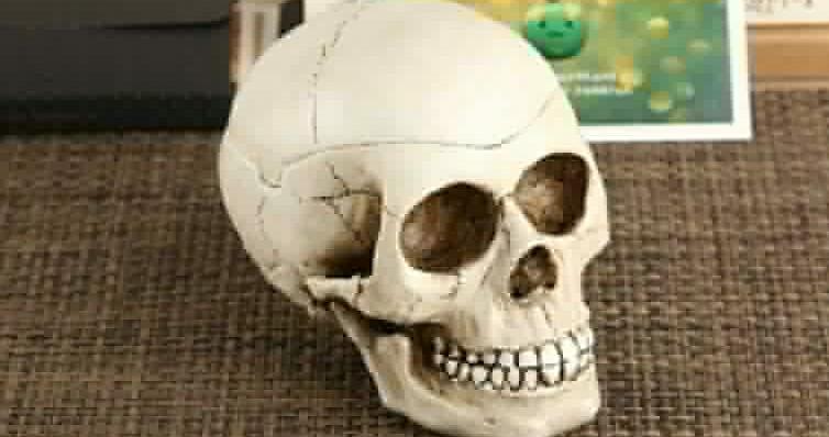Germany Under Pressure to Return Skull of Tanzanian Warrior Mangi Meli
