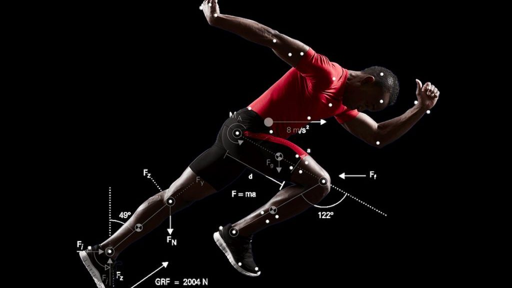 The biomechanics of our everyday lives