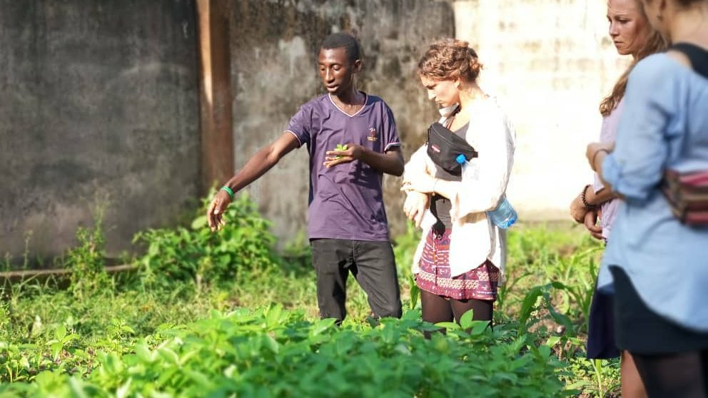 Meet Nigerian Youth Who Turned A Dumpsite to A Farmland