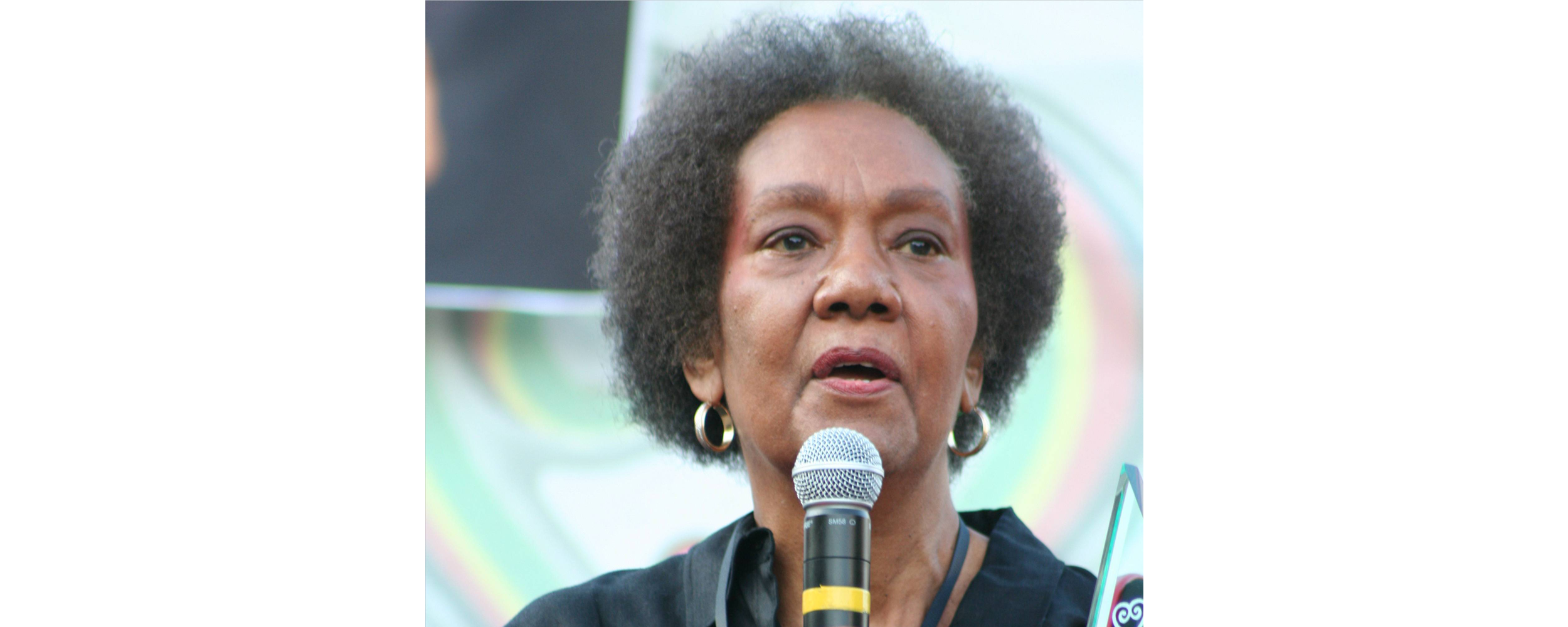 Frances Cress Welsing: the inspiration behind 'Fear of a Black Planet'